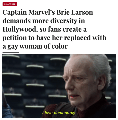 petition: HOLLYWOOD  Captain Marvel's Brie Larson  demands more diversity in  Hollywood, so fans create a  petition to have her replaced with  gay womanof color  а  T love democracy