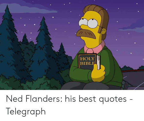 Ned Flanders Meme: HOLY  BIBLE  ww Ned Flanders: his best quotes - Telegraph