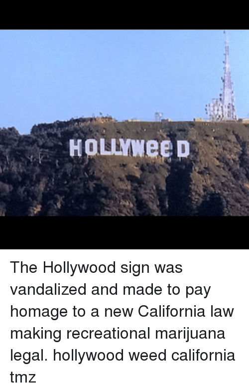 Memes, California, and Marijuana: HOLYWee D The Hollywood sign was vandalized and made to pay homage to a new California law making recreational marijuana legal. hollywood weed california tmz