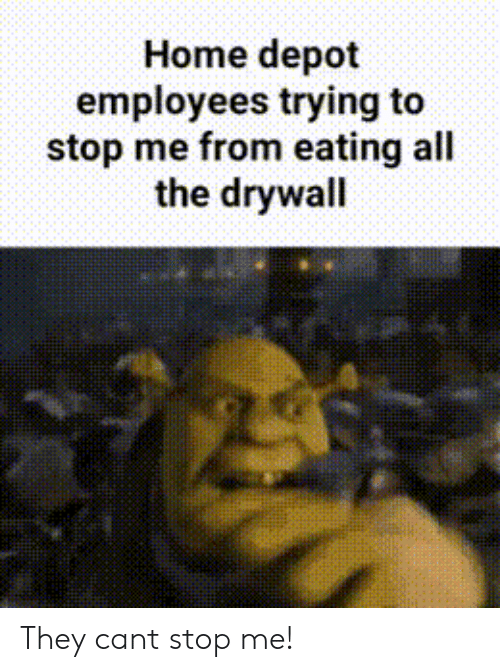Home, Home Depot, and All The: Home depot  employees trying to  stop me from eating all  the drywall They cant stop me!
