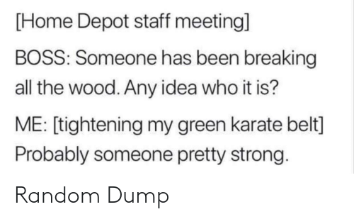 random: [Home Depot staff meeting]  BOSS: Someone has been breaking  all the wood. Any idea who it is?  ME: [tightening my green karate belt]  Probably someone pretty strong. Random Dump