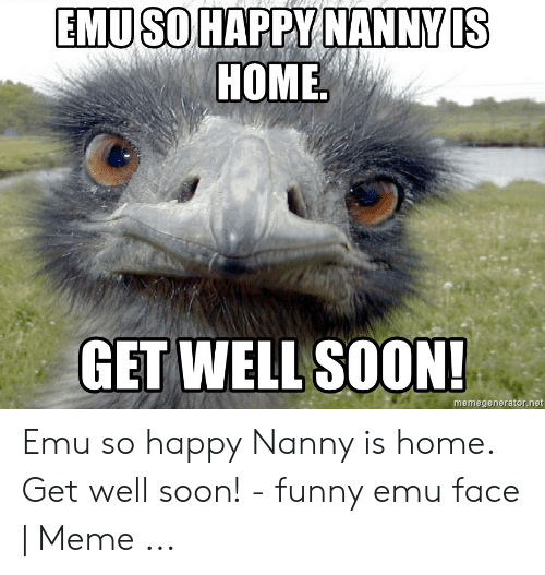 🦅 25+ Best Memes About Get Well Soon Funny | Get Well Soon Funny Memes