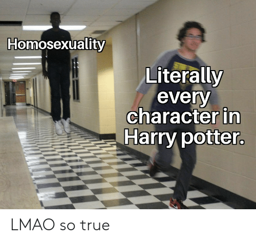 Harry Potter, Lmao, and True: Homosexuality  Literally  every  character in  Harry potter LMAO so true