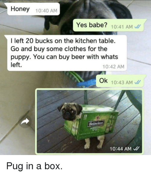 Beer, Clothes, and Funny: Honey 10:40 AM  Yes babe? 10:41 AM  I left 20 bucks on the kitchen table.  Go and buy some clothes for the  puppy. You can buy beer with whats  left.  10:42 AM  Ok 10:43 AM  18  Heineke  10:44 AM、//