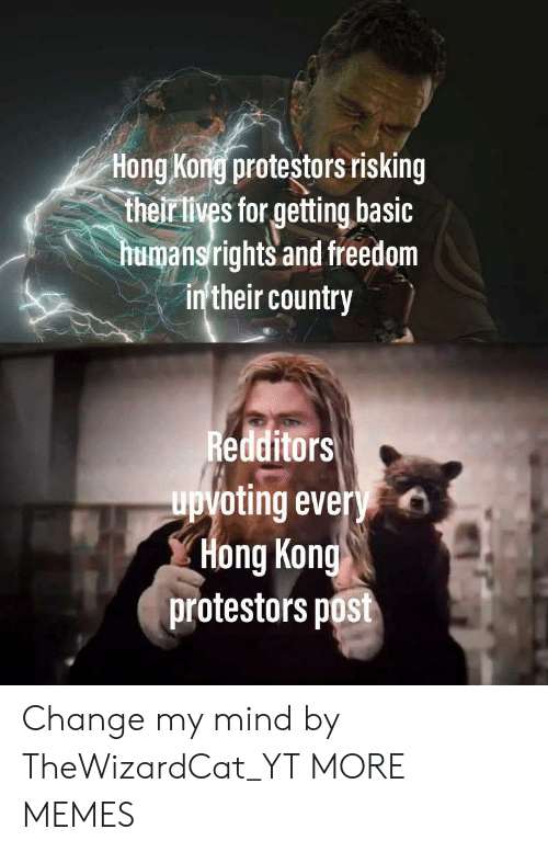Dank, Memes, and Target: Hong Kong protestors risking  their lives for getting basic  humansrights and freedom  in'their country  Redditors  upvoting every  Hong Kong  protestors post Change my mind by TheWizardCat_YT MORE MEMES