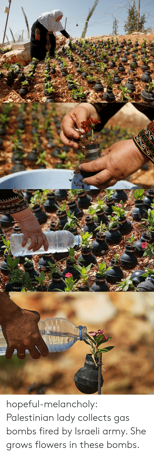 Target, Tumblr, and Army: hopeful-melancholy:  Palestinian lady collects gas bombs fired by Israeli army. She grows flowers in these bombs.