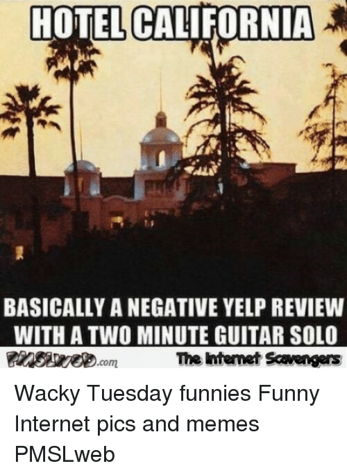 sae: HOTEL CALIFORNIA  SAE  BASICALLY A NEGATIVE YELP REVIEWW  WITH A TWO MINUTE GUITAR SOLO  The htemet Scavengers <p>Wacky Tuesday funnies  Funny Internet pics and memes  PMSLweb </p>