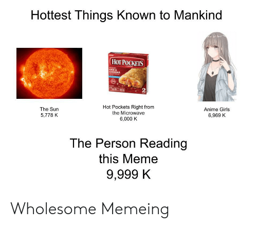 Anime, Girls, and Hot Pockets: Hottest Things Known to Mankind  НоT РОСКЕIS  HAM &  CHEDDAR  2  Hot Pockets Right from  the Microwave  The Sun  Anime Girls  5,778 K  6,969 K  6,000 K  The Person Reading  this Meme  9,999 K Wholesome Memeing