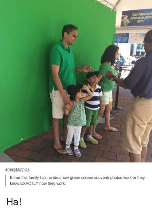 Family, Memes, and Work: hourAquariumn  adventure starts  emmyblotnick:  Either this family has no idea how green screen souvenir photos work or they  know EXACTLY how they work. Ha!