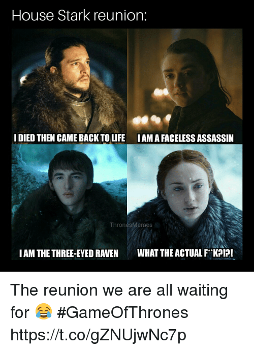 Faceless: House Stark reunion:  I DIED THEN CAME BACK TO LIFE IAMA FACELESS ASSASSIN  ThronesMemes  IAM THE THREE-EYED RAVENWHAT THE ACTUAL FK! The reunion we are all waiting for 😂 #GameOfThrones https://t.co/gZNUjwNc7p