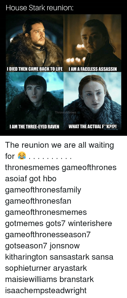What The Actual F: House Stark reunion:  I DIED THEN CAME BACK TO LIFE  IAMA FACELESS ASSASSIN  ThronésMemes  IAM THE THREE-EYED RAVEN WHAT THE ACTUAL F KP!?! The reunion we are all waiting for 😂 . . . . . . . . . . thronesmemes gameofthrones asoiaf got hbo gameofthronesfamily gameofthronesfan gameofthronesmemes gotmemes gots7 winterishere gameofthronesseason7 gotseason7 jonsnow kitharington sansastark sansa sophieturner aryastark maisiewilliams branstark isaachempsteadwright