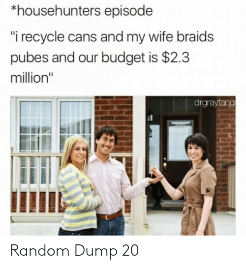 "Braids, Budget, and Wife: *househunters episode  ""i recycle cans and my wife braids  pubes and our budget is $2.3  million""  drgrayfang Random Dump 20"