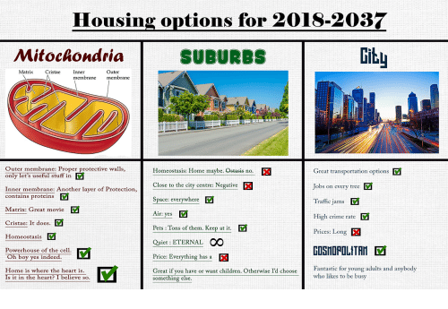 Children, Crime, and Traffic: Housing options for 2018-2037  Mitoclondria  SUBURBS  Gitu  Matrix CristaeInner  Outer  membrane membrane  Outer membrane: Proper protective walls,  Great transportation options  Jobs on every tree V  Traffic jams  High crime rate  Prices: Long  Homeostasis: Home maybe. Ostasis no.  only let's useful stuffF in  Close to the cty centre Negative  Inner membrane: Another layer of Protection,  contains proteins V  Space: everywhere  Matrix: Great movie  v  Cristae: It does.  Homeostasis  Powerhouse of the cell.  Oh boy yes indeed.  Home is where the heart is  Air: yes  Pets : Tons of them. Keep at it.  Quiet: ETERNAL OO  Price: Everything has a  GOSHOPOLITAN  Great if you have or want children. Otherwise I'd chooseFatti for young adults and anybody  Fantastic for young adults and anybod  who likes to be busy  Is it in the heart? I believe so.  something else
