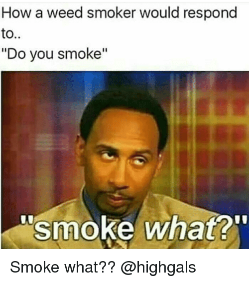 """Memes, Weed, and 🤖: How a weed smoker would respond  to..  """"Do you smoke""""  smoke what? Smoke what?? @highgals"""
