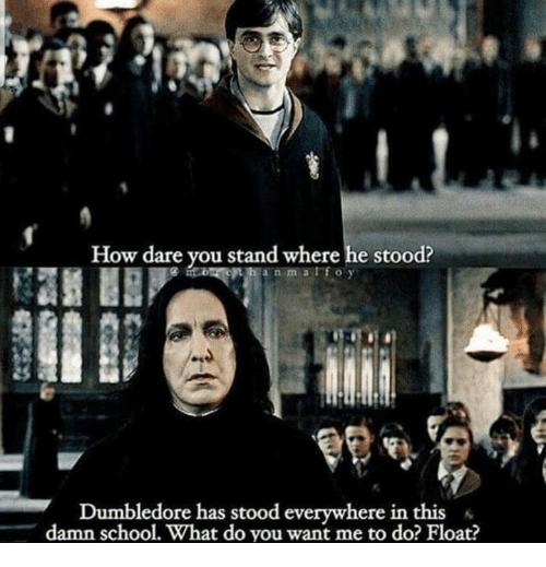 Dumbledore, School, and How: How dare you stand where he stood?  Dumbledore has stood everywhere in this «  damn school. What do you want me to do? Float?