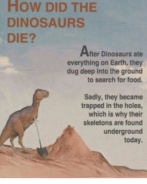 Food, Holes, and Dinosaurs: How DID THE  0  DINOSAURS  DIE?  After Dinosaurs ate  everything on Earth, they  dug deep into the ground  to search for food.  Sadly, they became  trapped in the holes,  which is why their  skeletons are found  underground  today.