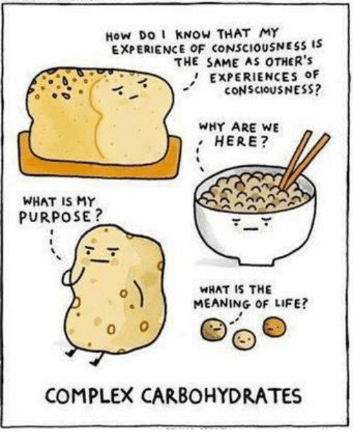 Complex, Life, and Meaning: How Do I KNOW THAT MY  EXPERIENCE OF CONSCIOUSNESs is  THE SAME AS OTHER's  ' EXPERIENCES oF  cONSCIOUSNESS?  WHY ARE WE  HERE?  WHAT IS MY  PURPOSE?  WHAT IS THE  MEANING OF LIFE?  COMPLEX CARBOHYDRATES