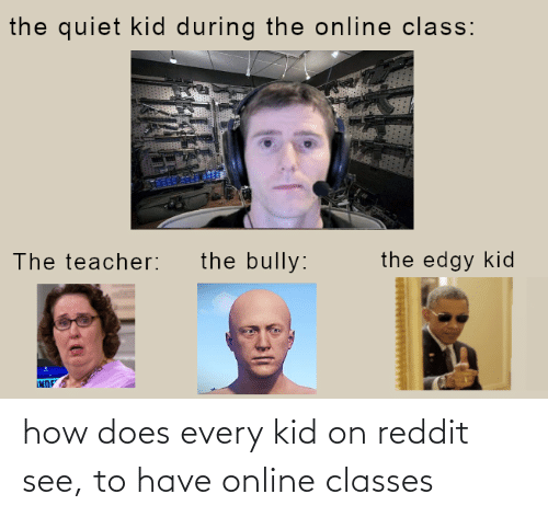 reddit: how does every kid on reddit see, to have online classes
