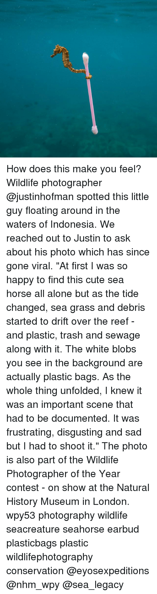 """Being Alone, Cute, and Memes: How does this make you feel? Wildlife photographer @justinhofman spotted this little guy floating around in the waters of Indonesia. We reached out to Justin to ask about his photo which has since gone viral. """"At first I was so happy to find this cute sea horse all alone but as the tide changed, sea grass and debris started to drift over the reef - and plastic, trash and sewage along with it. The white blobs you see in the background are actually plastic bags. As the whole thing unfolded, I knew it was an important scene that had to be documented. It was frustrating, disgusting and sad but I had to shoot it."""" The photo is also part of the Wildlife Photographer of the Year contest - on show at the Natural History Museum in London. wpy53 photography wildlife seacreature seahorse earbud plasticbags plastic wildlifephotography conservation @eyosexpeditions @nhm_wpy @sea_legacy"""