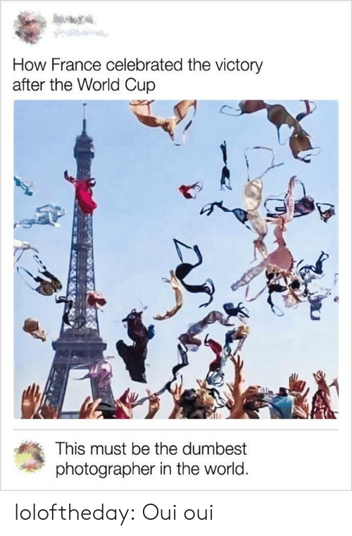 Tumblr, World Cup, and Blog: How France celebrated the victory  after the World Cup  This must be the dumbest  photographer in the world. loloftheday:  Oui oui