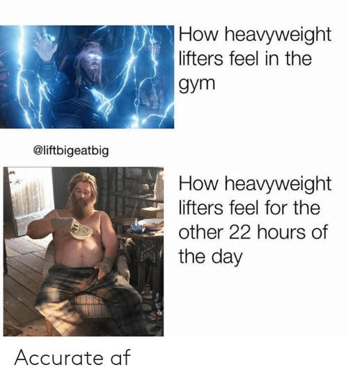 Af, Gym, and How: How heavyweight  lifters feel in the  gym  @liftbigeatbig  How heavyweight  lifters feel for the  other 22 hours of  the day Accurate af