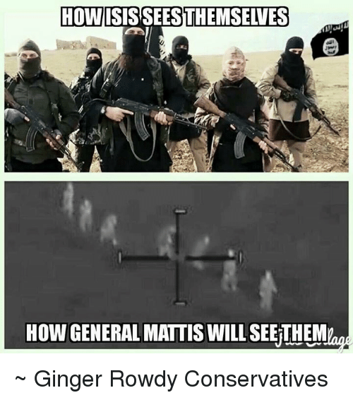 Memes, Rowdy, and Generalization: HOW  HOW GENERAL MATTIS WILL  SEETHEM ~ Ginger  Rowdy Conservatives