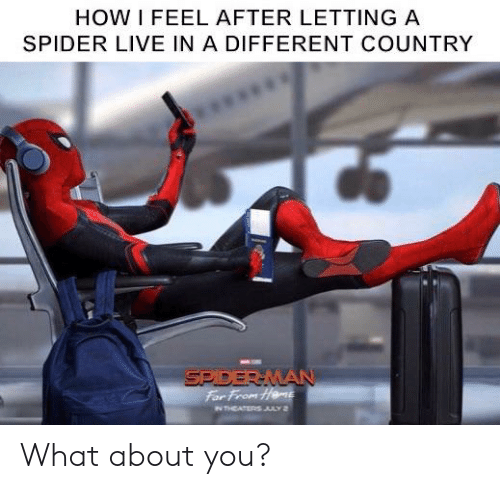 Marvel Comics, Spider, and Live: HOW I FEEL AFTER LETTING A  SPIDER LIVE IN A DIFFERENT COUNTRY  SPIDERMAN  For From Heme  N THEATERS JULY 2 What about you?