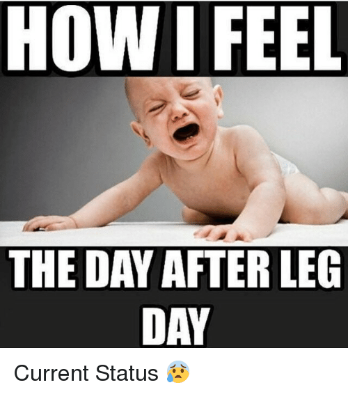 Day After Leg Day: HOW I FEEL  THE DAY AFTER LEG  DAY Current Status 😰