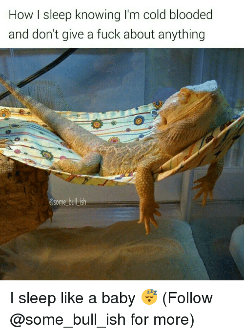 cold blooded: How I sleep knowing I'm cold blooded  and don't give a fuck about anything  Some bulLish I sleep like a baby 😴 (Follow @some_bull_ish for more)