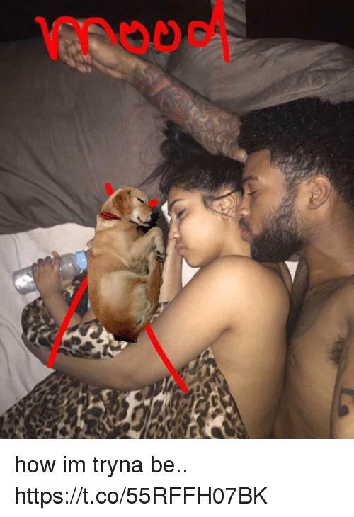 How and Tryna: how im tryna be.. https://t.co/55RFFH07BK
