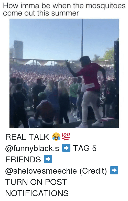Friends, Summer, and Dank Memes: How imma be when the mosquitoes  come out this summer REAL TALK 😂💯 @funnyblack.s ➡️ TAG 5 FRIENDS ➡️ @shelovesmeechie (Credit) ➡️ TURN ON POST NOTIFICATIONS