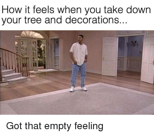 Dank, Tree, and 🤖: How it feels when you take down  your tree and decorations... Got that empty feeling