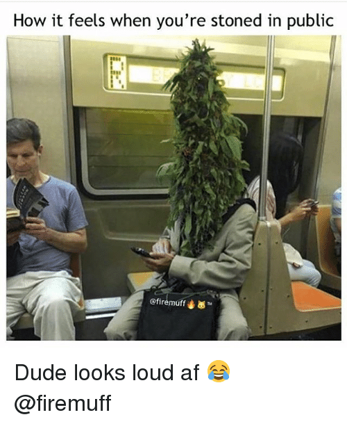 Af, Dude, and Weed: How it feels when you're stoned in public  @fi remuf'4 ™ Dude looks loud af 😂 @firemuff