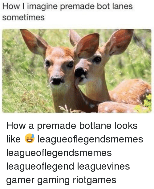 Memes, Gaming, and 🤖: How l imagine premade bot lanes  sometimes How a premade botlane looks like 😅 leagueoflegendsmemes leagueoflegendsmemes leagueoflegend leaguevines gamer gaming riotgames