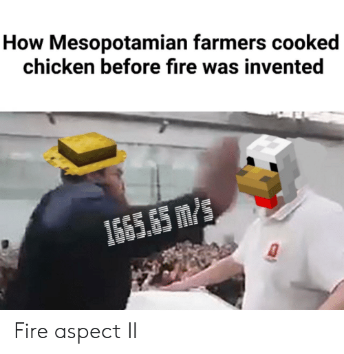 aspect: How Mesopotamian farmers cooked  chicken before fire was invented  1665.65 m/s Fire aspect II