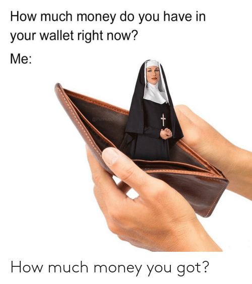 Wallet: How much money do you have in  your wallet right now?  Ме:  t  @PunHubOnine How much money you got?