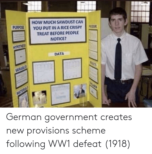 Government, How, and Ww1: HOW MUCH SAWDUST CAN  YOU PUT IN A RICE CRISPY  TREAT BEFORE PEOPLE  NOTICE  PURPOSE  AVIT  HYPOTHESS  DATA German government creates new provisions scheme following WW1 defeat (1918)