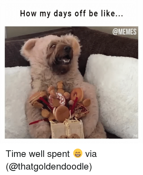 Be Like, Memes, and Time: How my days off be like...  @MEMES Time well spent 😁 via (@thatgoldendoodle)