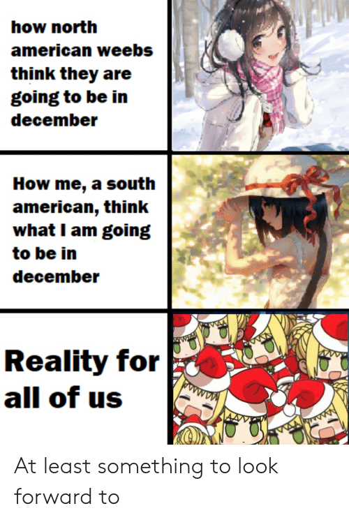 Anime, American, and Reality: how north  american weebs  think they are  going to be in  december  How me, a south  american, think  what I am going  to be in  december  WT  Reality for  all of us  MAA At least something to look forward to