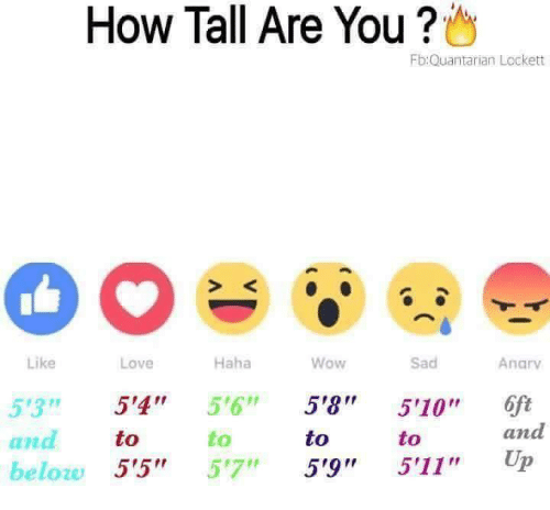 "anas: How Tall Are You ?  Fb:Quantarian Lockett  S K  Like  Love  Haha  Wow  Sad  Anarv  53 5'4"" 5'6"" 5'8 510"" 6ft  to  to  to  to  and  ana  beloze 5'5"" 57"" 5'9"" 5'11"" Up"