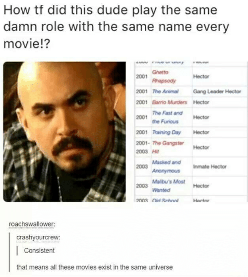 Dude, Ghetto, and Movies: How tf did this dude play the same  damn role with the same name every  movie!?  w  Ghetto  2001  Hector  Rhapsody  2001 The Animal  Gang Leader Hector  2001 Barrio Murders Hector  The Fast and  2001  Hector  the Furious  2001 Training Day  Hector  2001- The Gangster  Hector  2003 Hit  Masked and  2003  Iinmate Hector  Anonymous  Malibu's Most Hector  2003  Wanted  2003 School  Hacto  roachswallower:  crashyourcrew:  Consistent  that means all these movies exist in the same universe