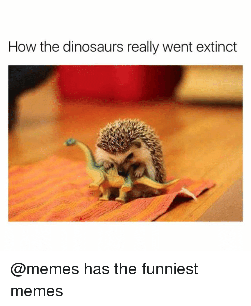 Funny, Memes, and Dinosaurs: How the dinosaurs really went extinct @memes has the funniest memes