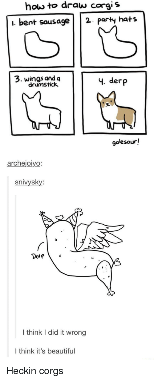 Heckin: how to draw corgis  i. bent sausage2 paty hats  3. wings and q  drumstick  4. derp  galesaur!  archejoiyo  snivysky:  Dere  I think I did it wrong  I think it's beautiful Heckin corgs