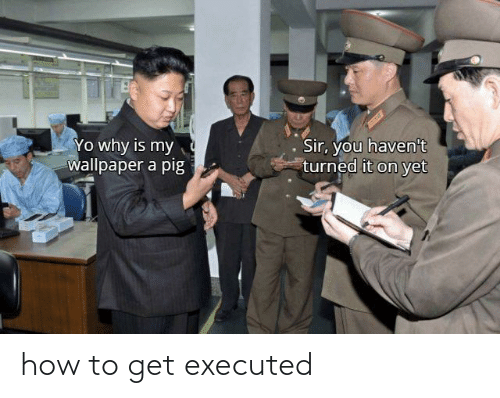 How To Get: how to get executed