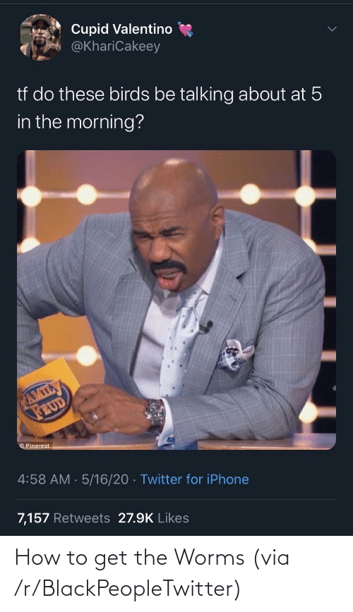 R Blackpeopletwitter: How to get the Worms (via /r/BlackPeopleTwitter)