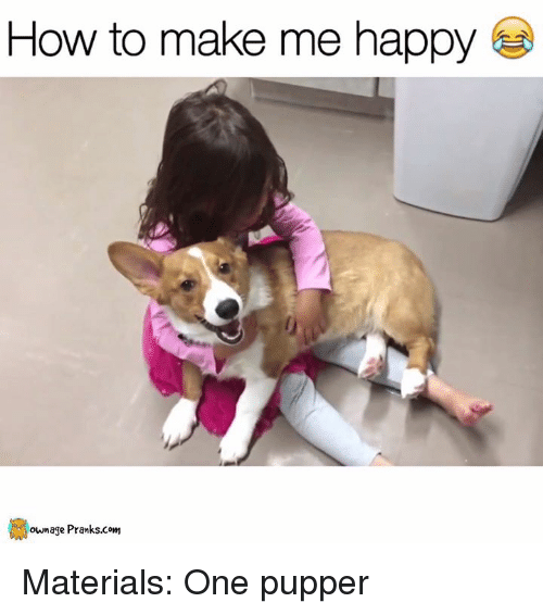 Materialism: How to make me happy  own age Pranks.com Materials: One pupper