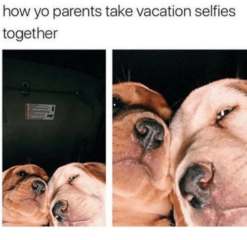 Parents, Yo, and Vacation: how yo parents take vacation selfies  together
