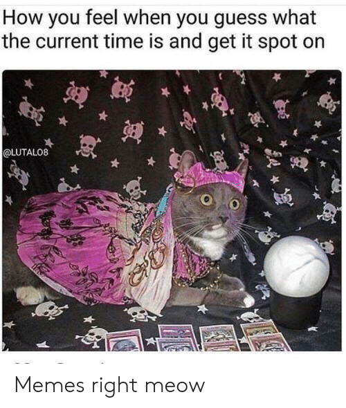 Memes, Guess, and Time: How you feel when you guess what  the current time is and get it spot on  @LUTALO8 Memes right meow