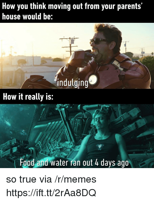 Food, Memes, and Parents: How you think moving out from your parents'  house would be:  indulging  How it really is:  Food and water ran out 4 days ago so true via /r/memes https://ift.tt/2rAa8DQ
