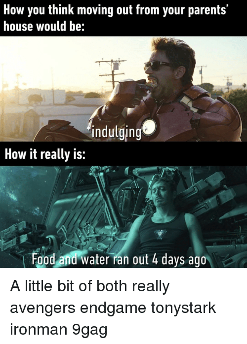 9gag, Food, and Memes: How you think moving out from your parents'  house would be:  indulging  How it really is:  Food and water ran out 4 days ago A little bit of both really⠀ avengers endgame tonystark ironman 9gag